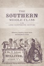 The Southern Middle Class in the Long Nineteenth Century - Cover
