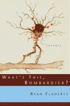 What's This, Bombardier? - Cover