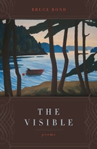The Visible - Cover